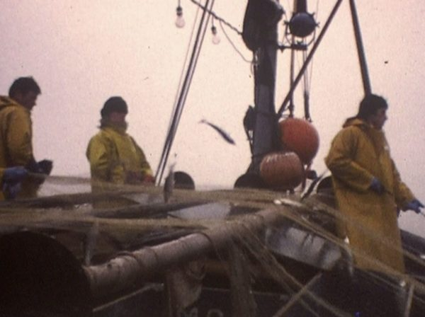 Pêche au hareng sur le Neptune